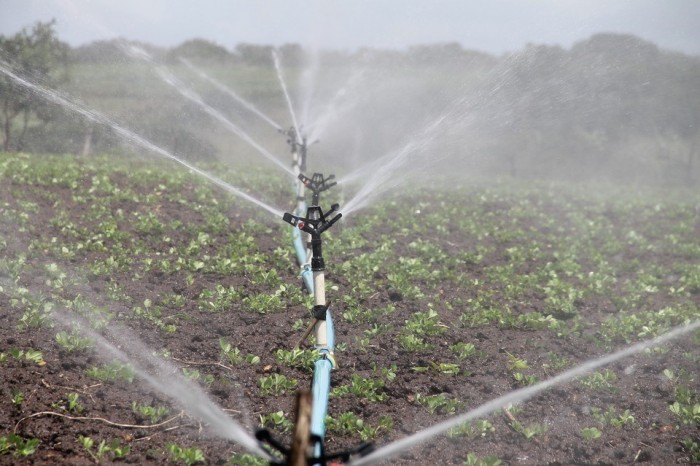 Crop irrigation, a form of climate change adaptation.